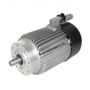 MOTOR ELEKTRIM IE2 B14 1500 2/4 0,17CV-0,12KW 63A IP65